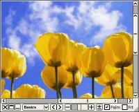 Moo0 ImageViewer